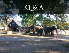Victoria Falls Questions & Answers