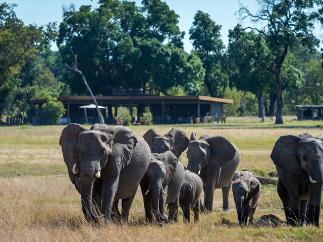 In front of a room at Davisons Camp - Hwange National Park, Zimbabwe