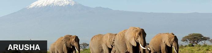 Destination Arusha, Tanzania
