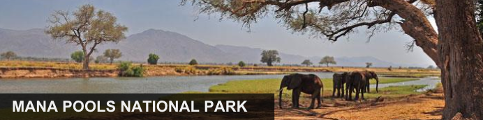 Destination Mana Pools National Park, Zimbabwe