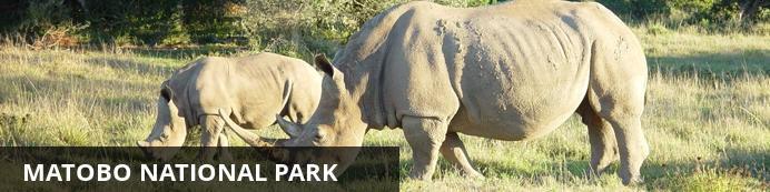 Destination Matobo National Park - Zimbabwe