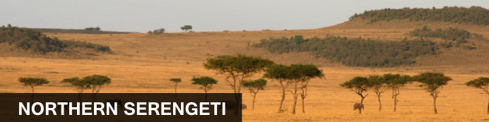 Destination North Serengeti, Tanzania