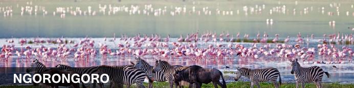 Destination Ngorongoro Crater, Tanzania