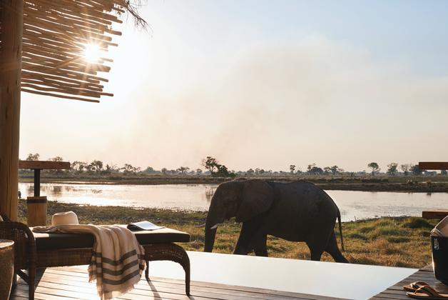 Eagle Island Camp in the Okavango Delta, Botswana