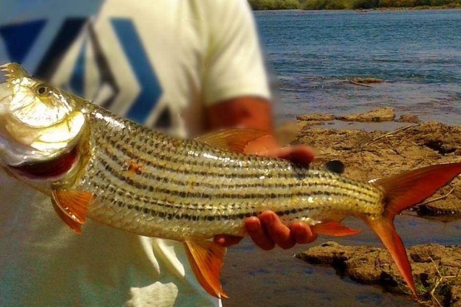 Fishing near Victoria Falls, Zimbabwe