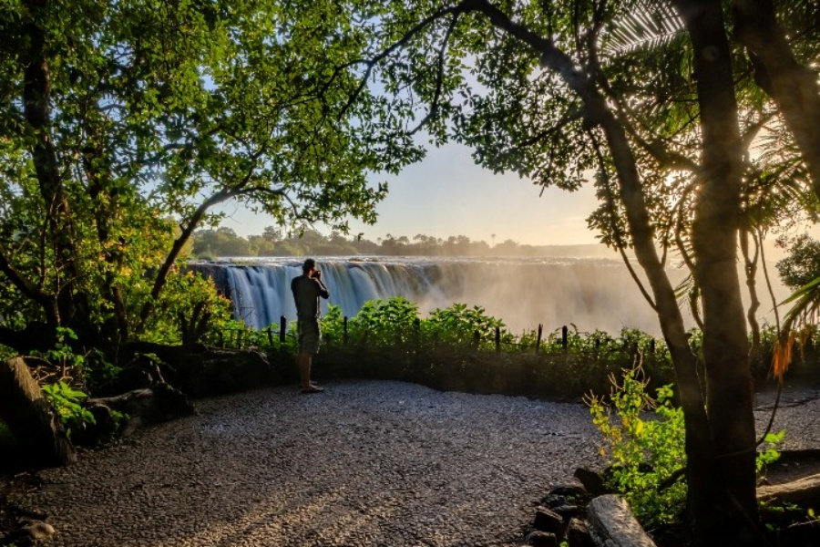 The Victoria Falls rainforest at sunrise - Victoria Falls Guide