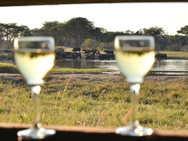 View of the waterhole/pan from the underground hide at The Hide in Hwange National Park - Zimbabwe
