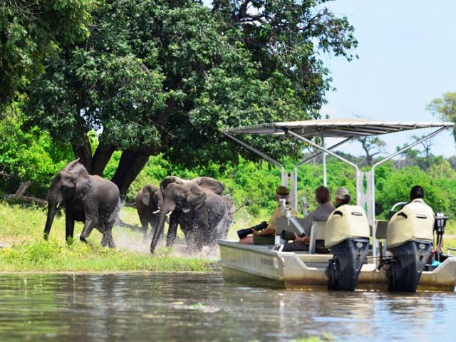 Ichingo Chobe River Lodge - Chobe River, Botswana, Namibia