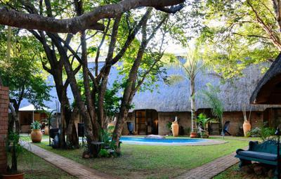 Nguni Lodge garden