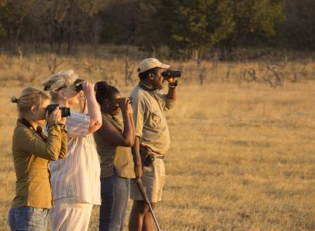 Ivory Lodge walking safari, Hwange National Park, Zimbabwe