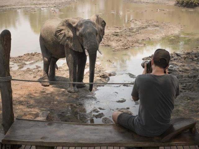Armchair safari at Kanga Camp