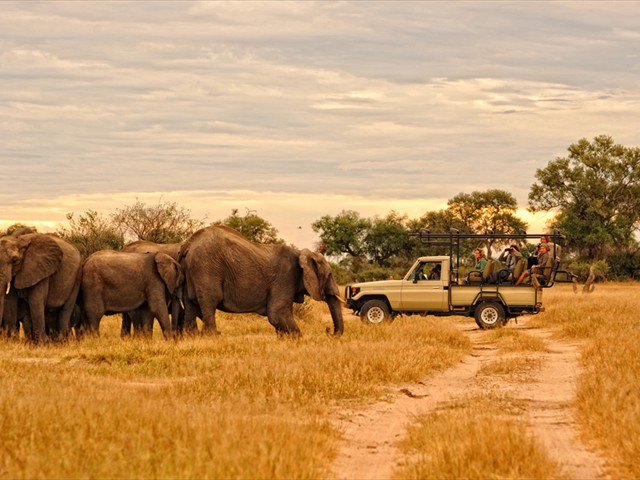 Game drive in Mana Pools National Park, Zimbabwe