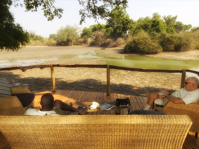 The view of the African bush in the drier season