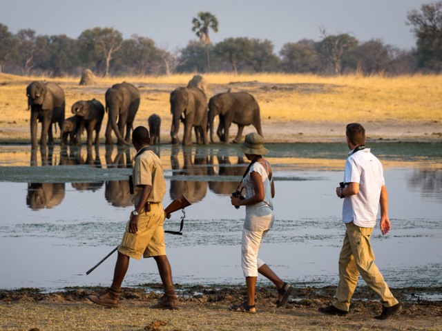 Walking safaris in Hwange National Park - Zimbabwe