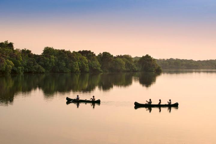 Explore the Zambezi