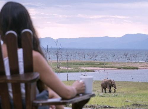 Changa Safari Camp, Matusadona National Park, Lake Kariba, Zimbabwe