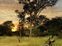 Real African safari at Bomani Tented Lodge in Hwange National Park, Zimbabwe