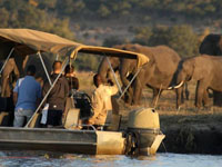 Overnight camping trip in Chobe National Park, Botswana