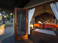 Inside a standard tented room at Davisons Camp, Hwange National Park - Zimbabwe