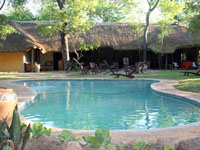 The shaded garden and refreshing pool at Miombo Camp in Hwange National Park, Zimbabwe