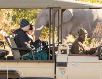 Game drives in the Okavango delta