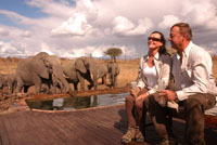 Guests at Somalisa Camp pool in Hwange National Park, Zimbabwe