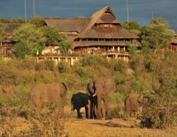 View of Victoria Falls Safari Lodge from the waterhole, Victoria Falls, Zimbabwe