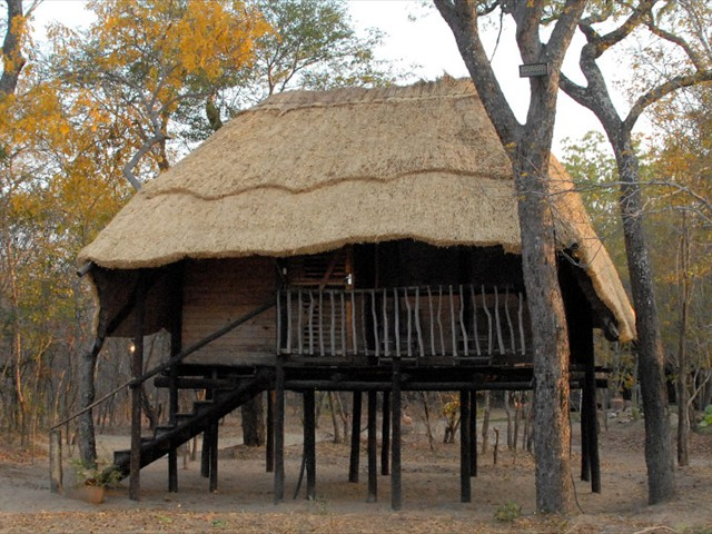 The rustic thatched treehouse
