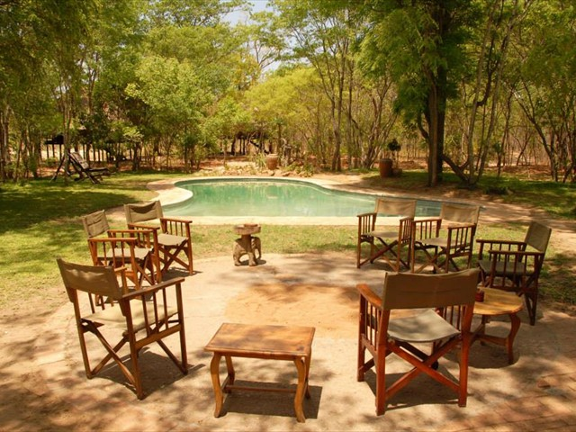 The garden and pool at Miombo Safari Camp - Hwange, Zimbabwe