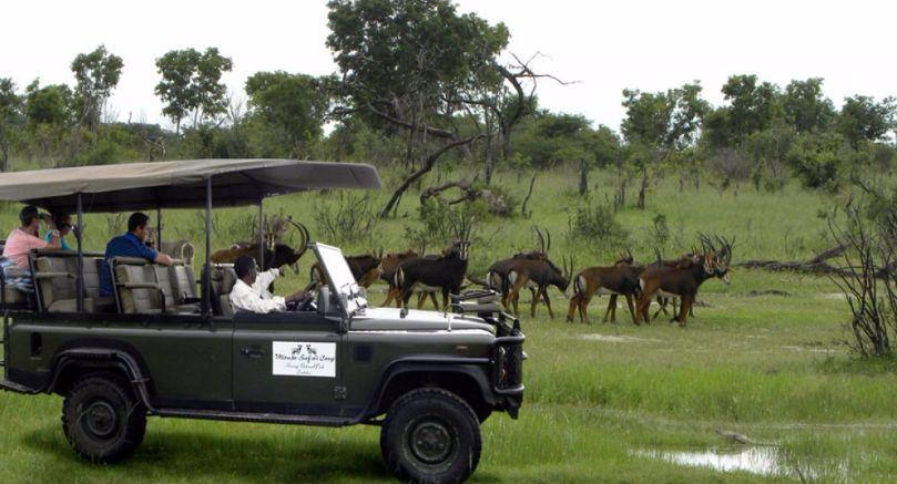 Miombo Safari Camp game drive in Hwange National Park
