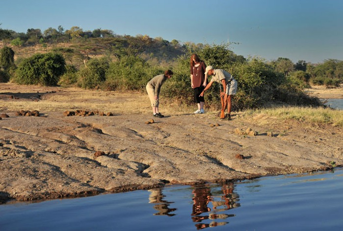 Bush Walk along the Chobe River - Muchenje Safari Lodge, Botswana