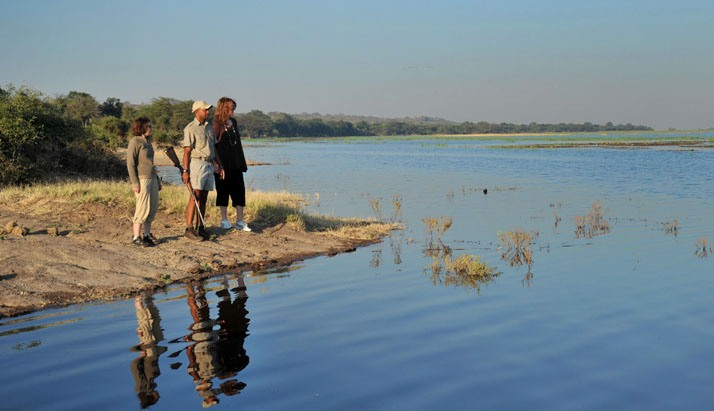 Bush Walk along the Chobe River - Muchenje Safari Lodge, Botswana