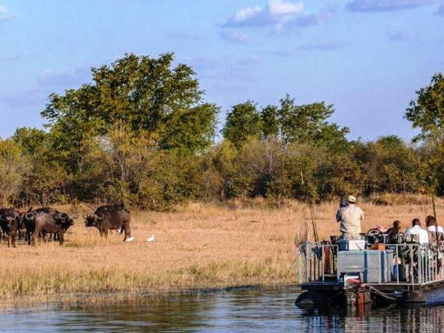 Game viewing by boat at Musango Safari Camp - Lake Kariba
