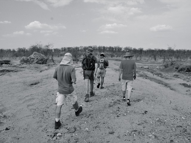 Nehimba Lodge game walk in Hwange National Park - Zimbabwe
