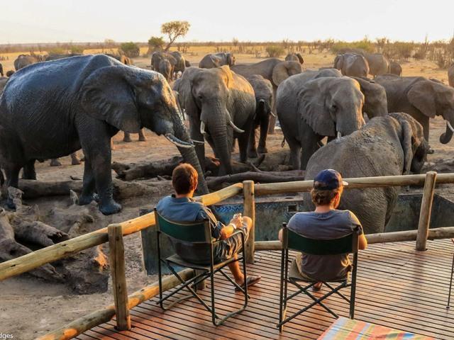 Nehimba Lodge - Hwange National Park, Zimbabwe