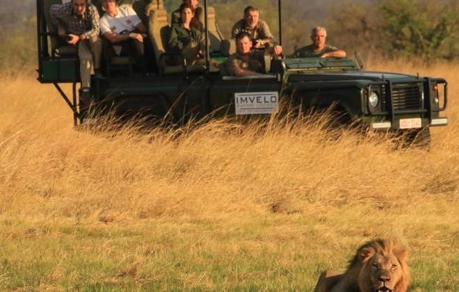 Nehimba Lodge game drive in Hwange National Park - Zimbabwe