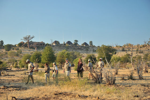 Guided Walking safari at Ngoma, Chobe National Park, Botswana