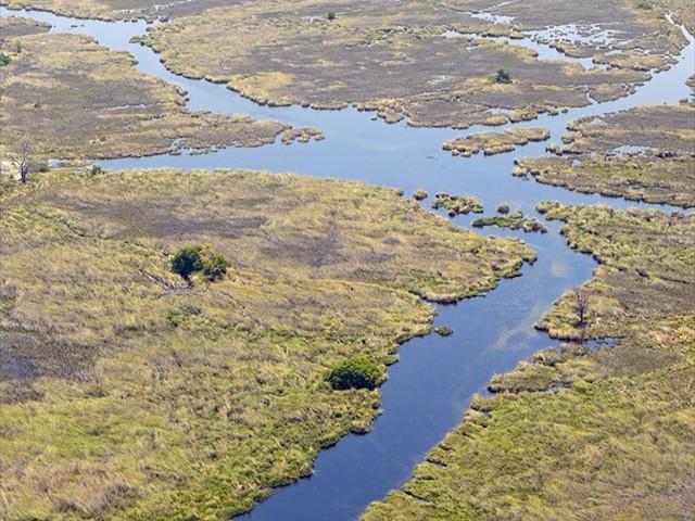 Aerial view of part of the Okavango Delta