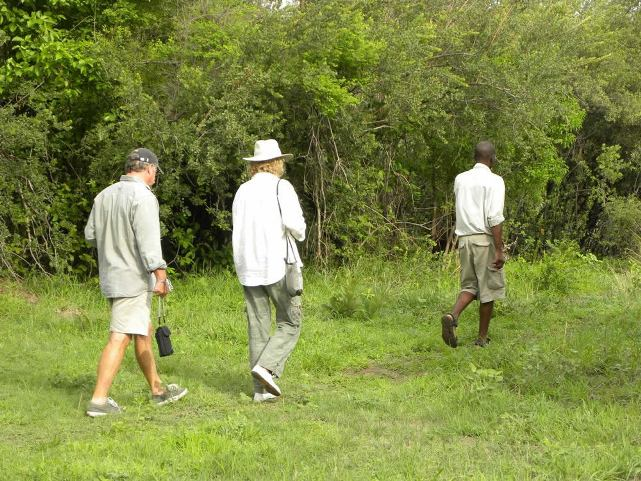 Bush walk at Pioneers Camp, Zambezi National Park near Victoria Falls, Zimbabwe