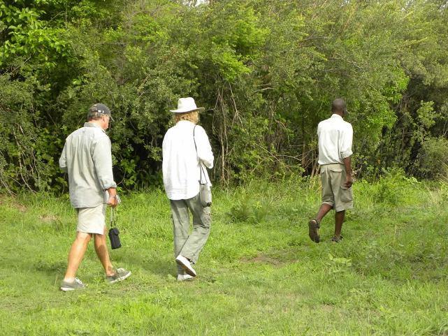 Bush walk at Pioneers Camp, Zambezi National Park near Victoria Falls, Zimbabwe