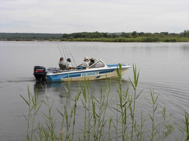 Fishing on the Zambezi River with Pioneers Camp - Zimbabwe