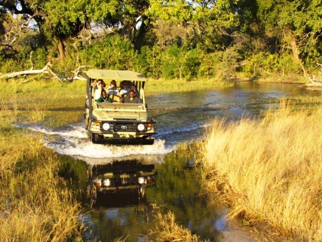 Game drives in the Okavango delta