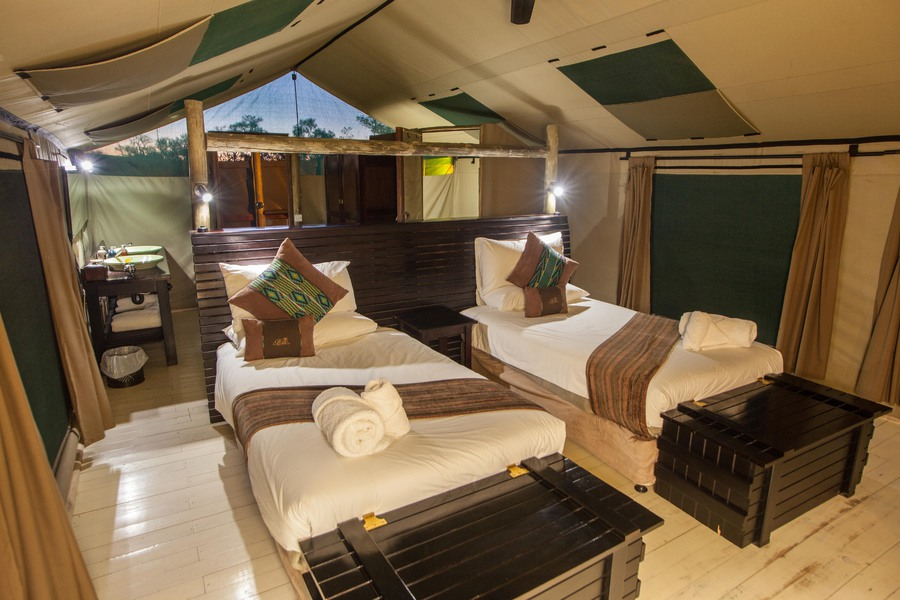 Luxurious rooms in safari camps