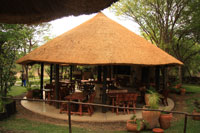 Rainforest Cafe - Victoria Falls Rainforest