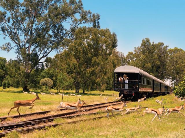 Rovos Rail - Victoria Falls, Zimbabwe to Pretoria, South Africa