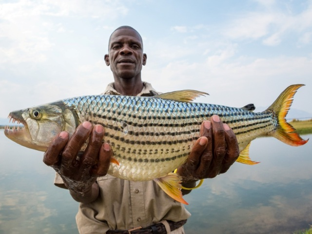 Fishing in Mana Pools National Park, Zimbabwe