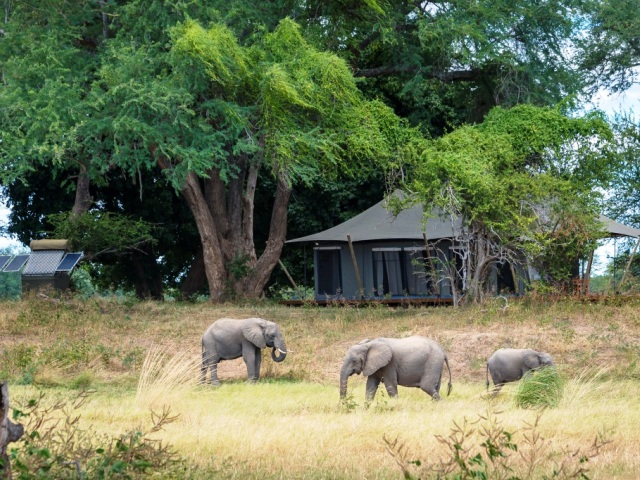 Ruckomechi Camp - Mana Pools National Park, Zimbabwe