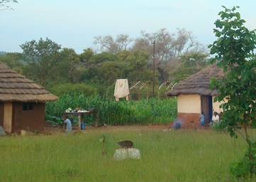 A Meet The People tour of a local village near Victoria Falls - Zimbabwe