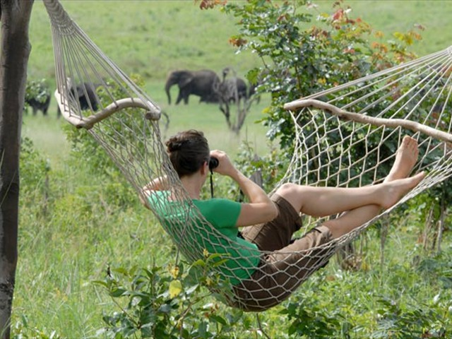 Relax and watch the animals on the Dete Vlei