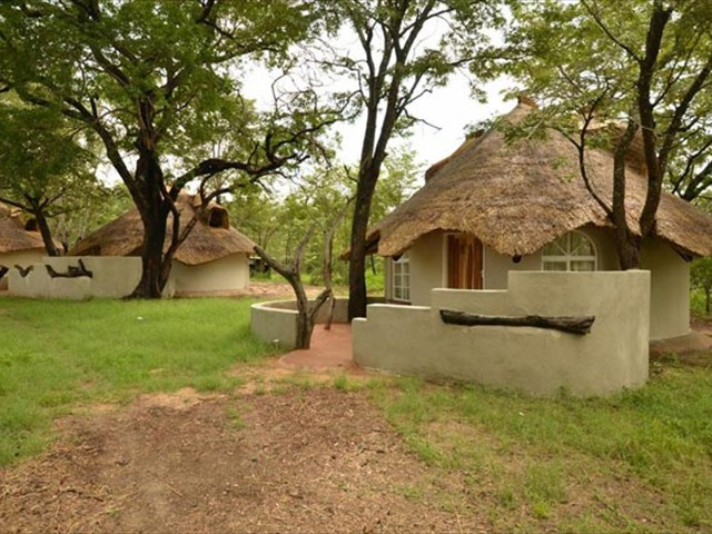 Thatched forest chalets
